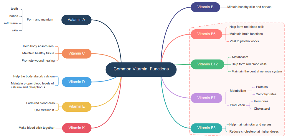 Funktionen von Vitaminen Mind Map