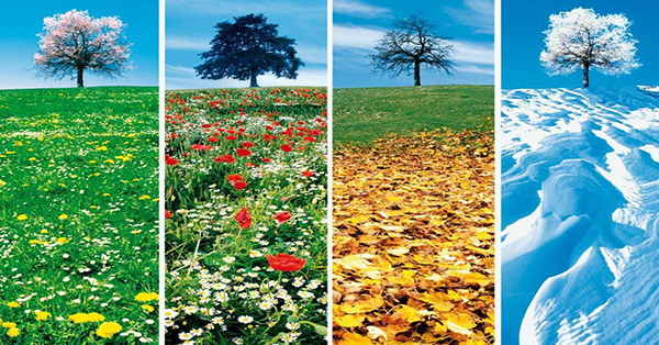 climate in four seasons
